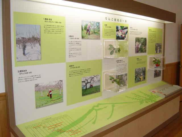 農林総合研究センター りんご研究所5